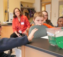 Male college student showing school age children Zebrafish in a small tank.